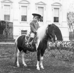 Quentin Roosevelt on his pony