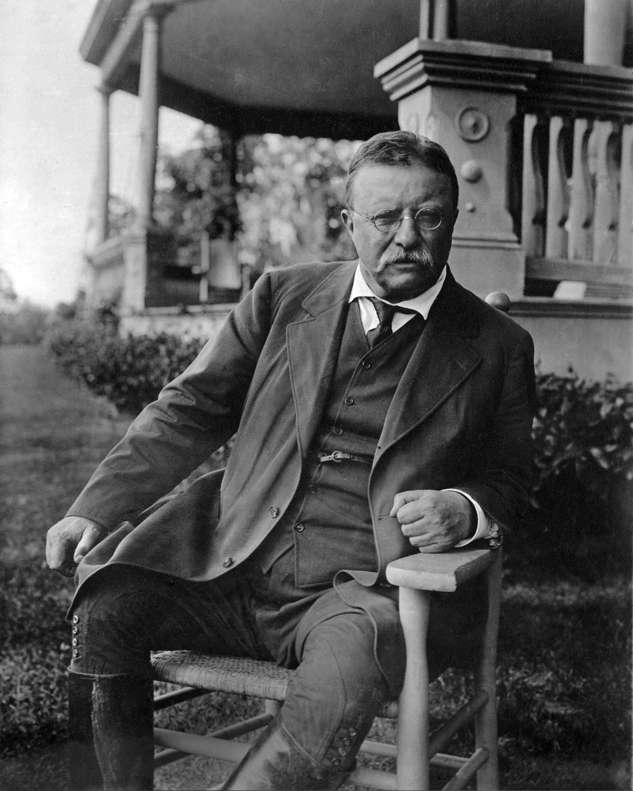 What did Theodore Roosevelt do?